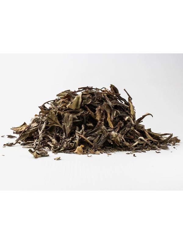 λευκό τσάι Pai Mu Tan χύμα