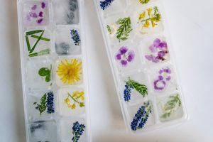 παγάκια με λουλούδια σε παγοθήκες