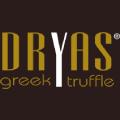 Dryas logo