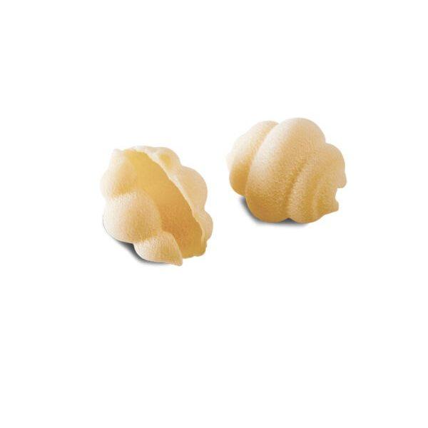 2 ζυμαρικά κοχύλια σε λευκό φόντο